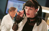 axn-pauley-perrette-s-fan-q-and-a-1