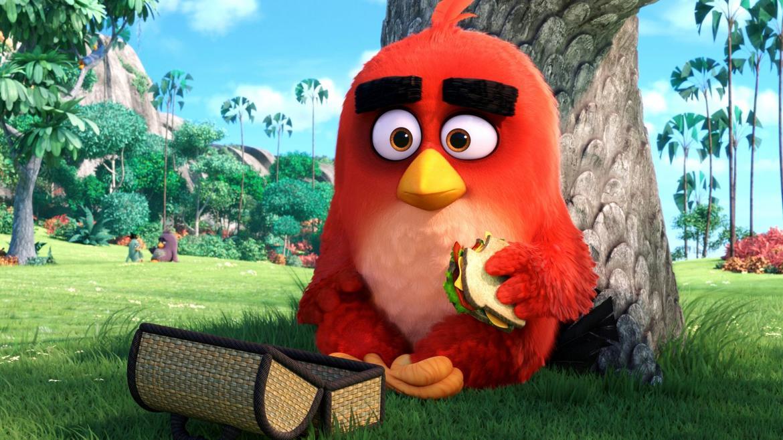 axn-angry-bird
